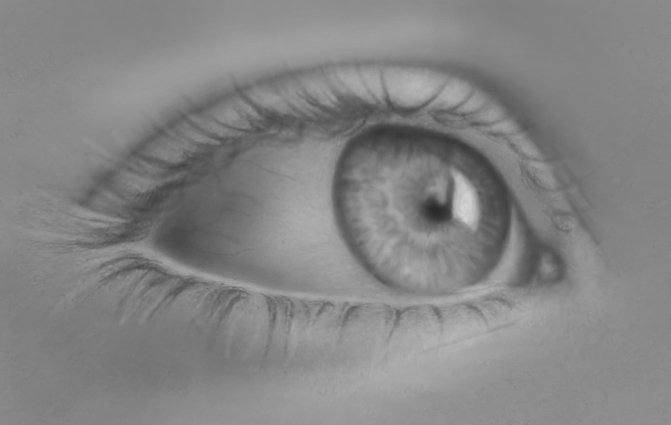 human-eye-drawing