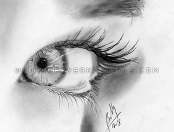 female eye drawings